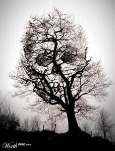 death_tree